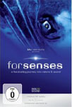 forsenses – A Fascinating Journey into Nature & Sound