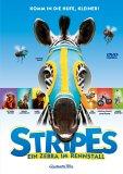 Stripes – Ein Zebra im Rennstall